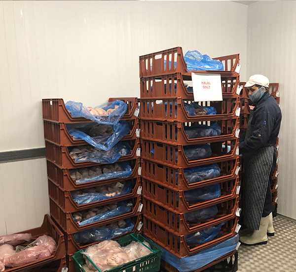 Halal-Poultry-Storage-Refrigerated-Area